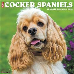 Cocker Spaniels 2020 Wall Calendar