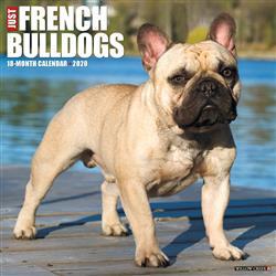 French Bulldogs 2020 Wall Calendar