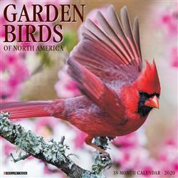 Garden Birds 2020 Wall Calendar