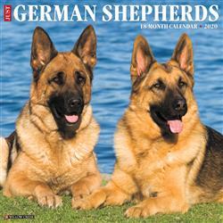 German Shepherds 2020 Wall Calendar