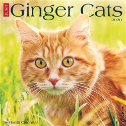 Ginger Cats 2020 Wall Calendar