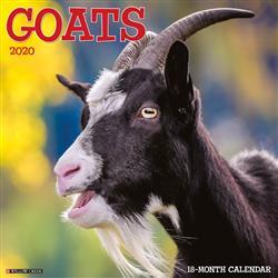 Goats 2020 Wall Calendar