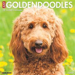 Goldendoodles 2020 Wall Calendar