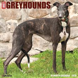 Greyhounds 2020 Wall Calendar