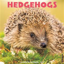Hedgehogs 2020 Wall Calendar