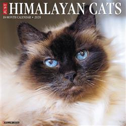 Himalayan Cats 2020 Wall Calendar