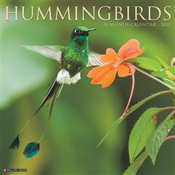 Hummingbirds 2020 Wall Calendar