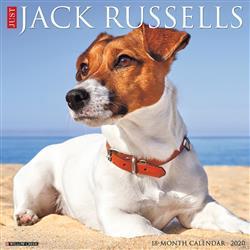 Jack Russells 2020 Wall Calendar