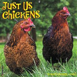 Just Us Chickens 2020 Wall Calendar