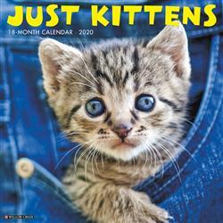 Kittens 2020 Wall Calendar