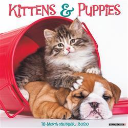Kittens & Puppies 2020 Wall Calendar
