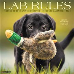 Lab Rules 2020 Wall Calendar