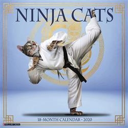 Ninja Cats 2020 Wall Calendar