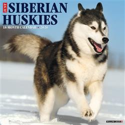 Siberian Huskies 2020 Wall Calendar