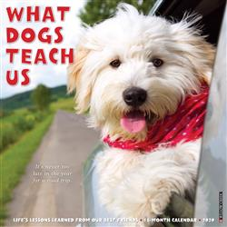 What Dogs Teach Us 2020 Wall Calendar