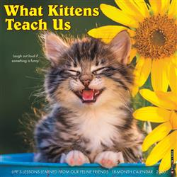 What Kittens Teach Us 2020 Wall Calendar