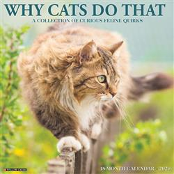 Why Cats Do That 2020 Wall Calendar