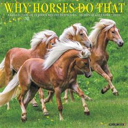 Why Horses Do That 2020 Wall Calendar