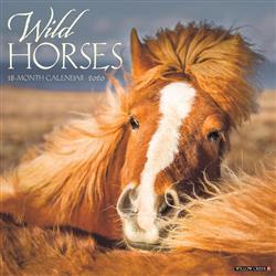 Wild Horses 2020 Wall Calendar