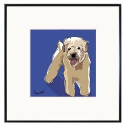 Framed Print: Wheaten Terrier