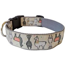 mango st. dog collar