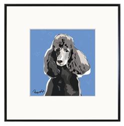 Framed Print: Poodle, Black