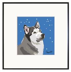 Framed Print: Husky