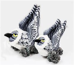 Snowy Owl - Ballistic Ballers