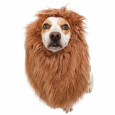 Lion Mane Costume for Medium and Big Dogs