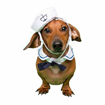 Sailor Costume for Small Dogs