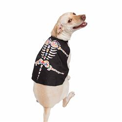 Day of the Dead Dog Costume