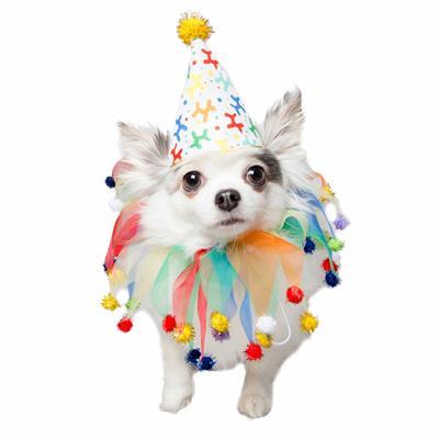 Celebration/Birthday Hat & Collar Set for Dogs