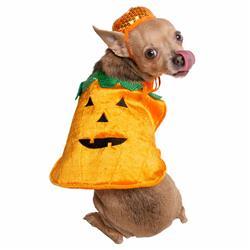 Pumpkin Dog Costume