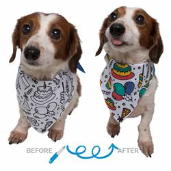 Celebration/Birthday Color-your-Own Pet Bandana Kit