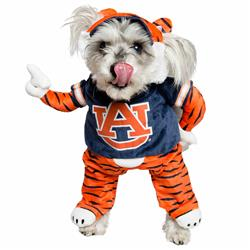Auburn Lucky Dog Mascot Costume