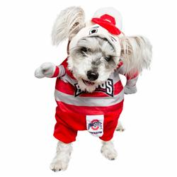 Ohio State Lucky Dog Mascot Costume