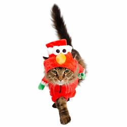 Santa Elmo Cat Costume