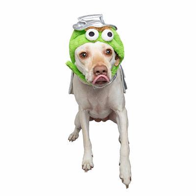 Oscar the Grouch Pet Costume