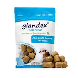 Peanut Butter Soft Chews for Dogs by Glandex