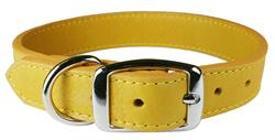 Golden Rod Luxe Leather Dog Collar / Lead