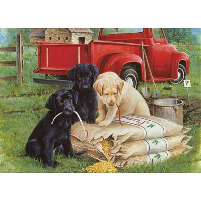 Just Dogs - 1000 Piece Puzzle
