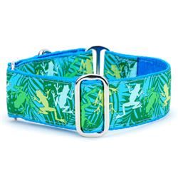 Coqui Surf Satin Lined Collars & Leads