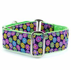 Margaritas de Primavera Satin Lined Collars & Leads