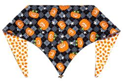 Glow Punkin' Party ArfScarf