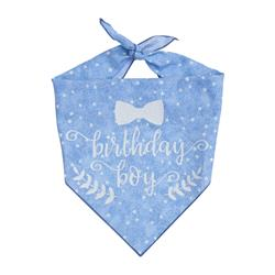 Happy Birthday Boy! Birthday Dog Bandana |