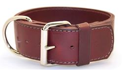 "2"" Latigo 2-Ply Leather Sporting Dog Collars with D-ring in Front"