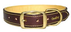 Havana Brown Deer Tan Collars and Leads