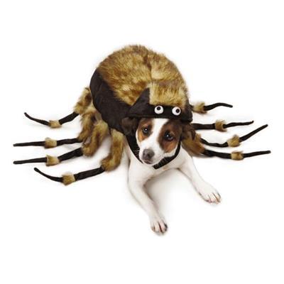 Zack & Zoey Fuzzy Tarantula Costume