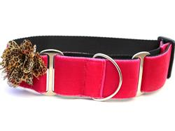 Pamela Martingale Dog Collar