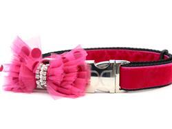 Bardot Pink Velvet Dog Collar Rose Gold Metal Buckles